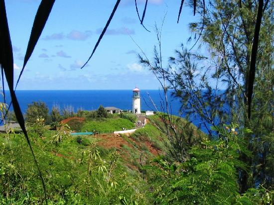 Best of Kauai Tour: Kilauea Lighthouse