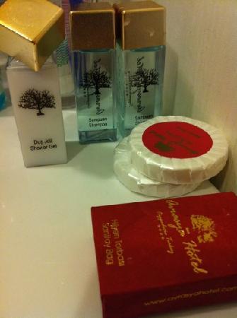 Avrasya Hotel: toiletries provided