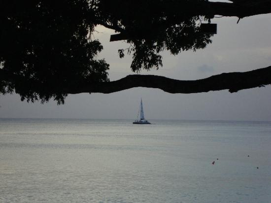 Treasure Beach: evening view