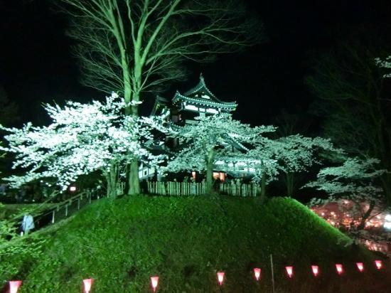 Takada Castle