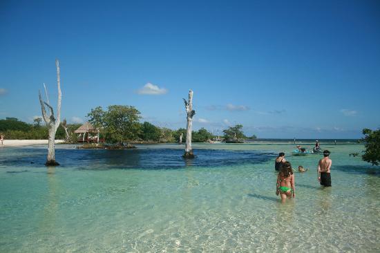 Hacienda Tres Rios: praia do hotel, agua cristalina