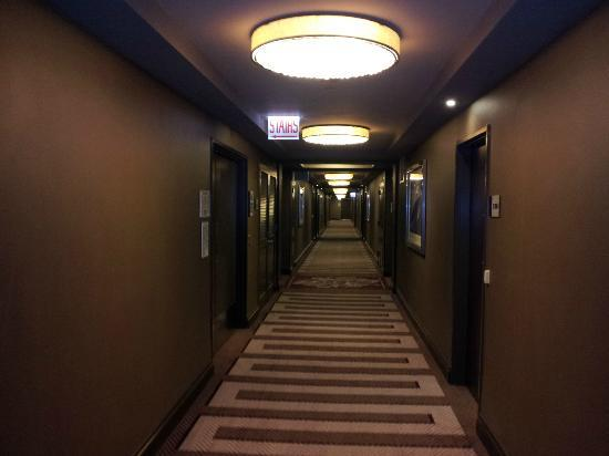 13th floor hall - Picture of Hilton
