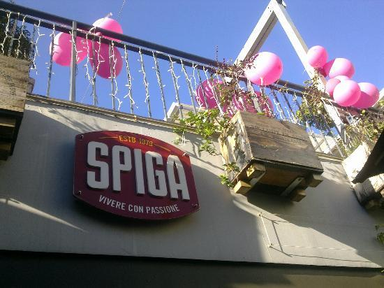 Spiga D'oro: Spiga - always festive!