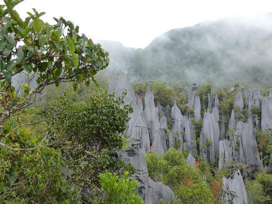 Miri, Malaysia: The reward, the mist clearing