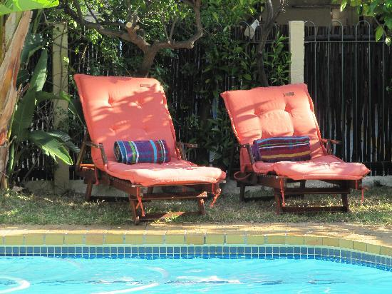 Carmichael Guesthouse: Summer day by the pool