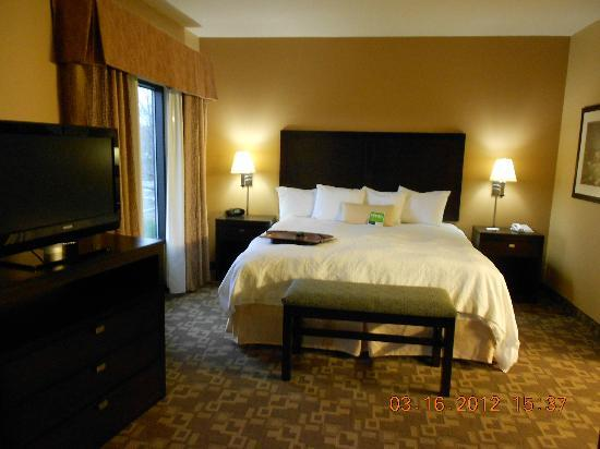Hampton Inn and Suites Knoxville North: King Bed