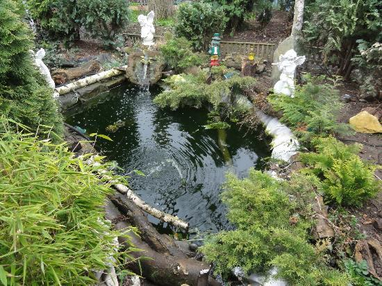 Villa Mansland: The pond