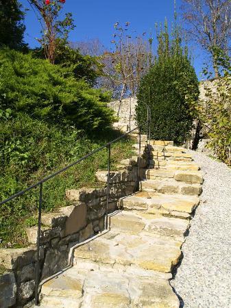 Villa Rina: garden