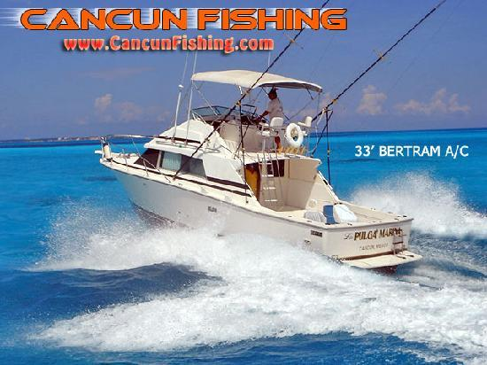 Cancun fishing charters mexico anmeldelser tripadvisor for Cancun fishing charters