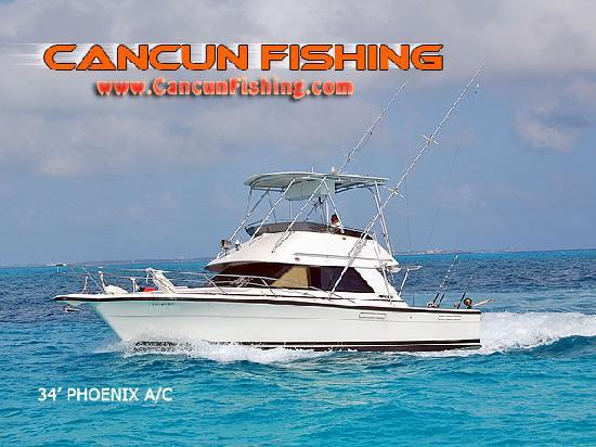 Cancun fishing charters canc n mexiko omd men for Cancun fishing trips