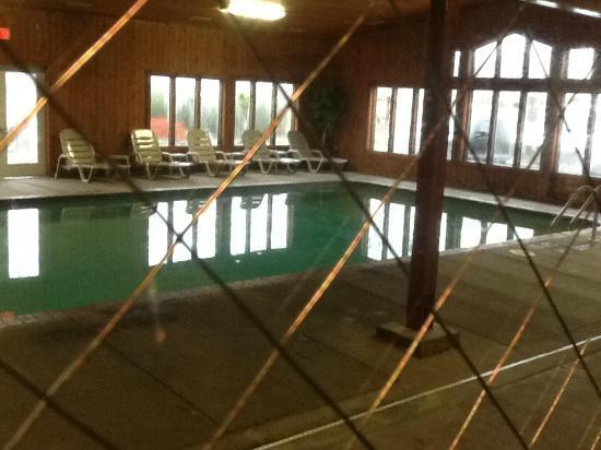 Rodeway Inn: Pool #2