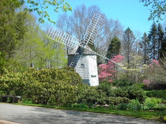 Heritage Museums & Gardens : Old East Windmill