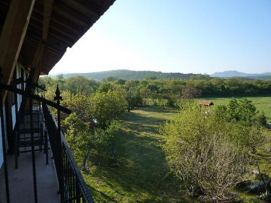 Madona Inn Falkovets: View from 2nd floor towards the inn garden