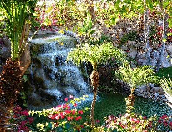 The Canyon Suites at The Phoenician : loved this waterfall area