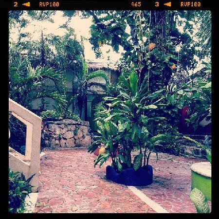 Hotel Copa : Hotel en Playa del Carmen : A view from right outside our room :) So nice