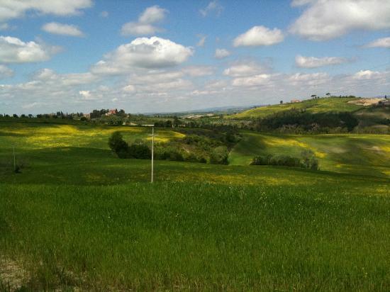Agriturismo Saltafabbro : Panorama dalla camera