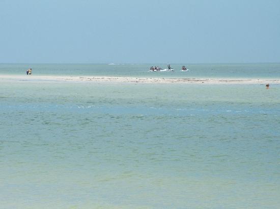 Caladesi Island State Park: Sandbar near the island.