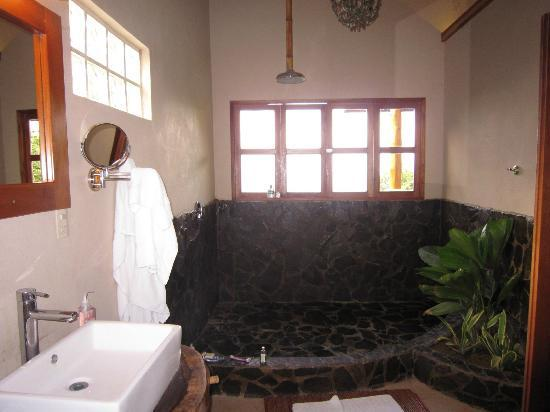Casa Chameleon: villa vista shower