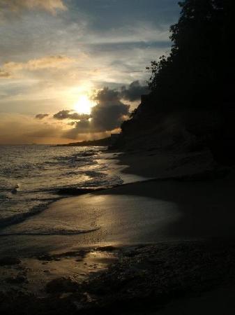 Rainbow Beach Club : view of sunset by the beach