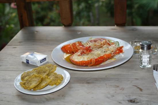 Restaurant Los Canones: aragosta Los Canones