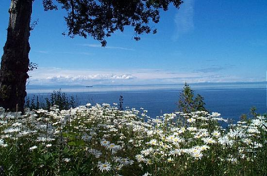 Colette's Bed and Breakfast Inn: Strait of Juan de Fuca & San Juan Islands