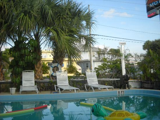Amber Tides Motel: Swimming Pool