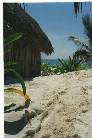 Hotel & Cabanas Zazil Kin Tulum: Vista de la puerta de mi Bungalow