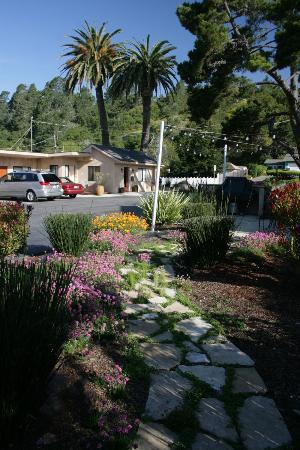 Cambria Palms Motel: Gardens