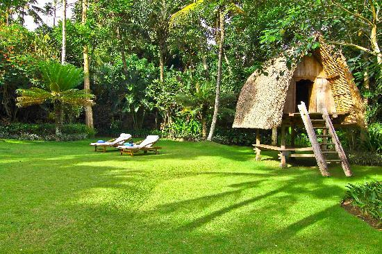 Chintamani Retreat & Spa: Landscaped grounds