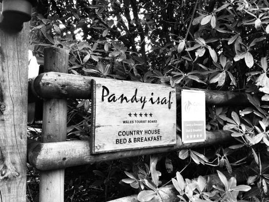 Pandy Isaf Country House Bed & Breakfast: A little piece of heaven....