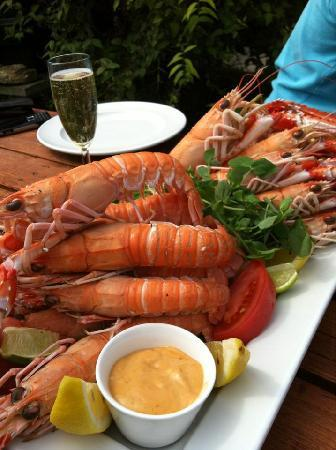The Longs Arms: Here is a tasty treat Rob served up for a guest last Summer.