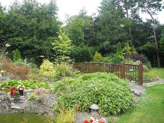 Riverstown Country House: the pond garden