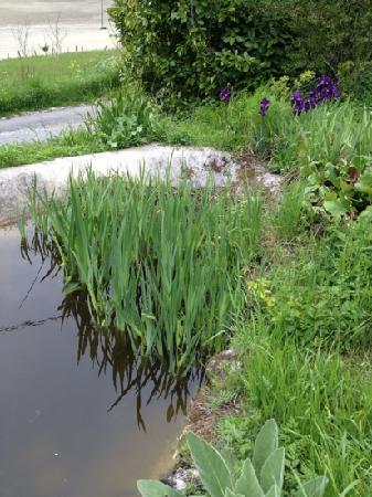 La Valette: Teich im Garten