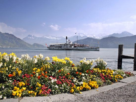 Steamboat - Lake Lucerne