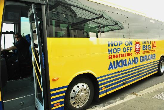 Auckland Hop On Hop Off Explorer: Hop On Hop Off Sightseeing Auckland Explorer