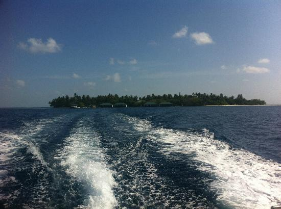Embudu Village: view from the boat to island