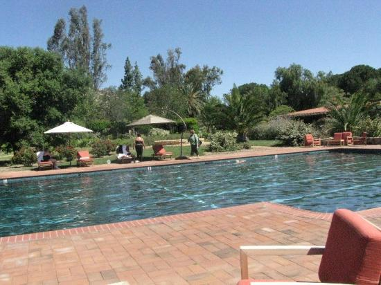 Rancho La Puerta Spa : The acitivity pool - one of many