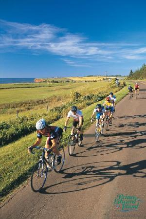 Fairways Cottages : 8 cycling and hiking trails within 5 minutes