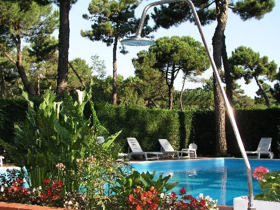 Hotel Rosen Garden : piscina