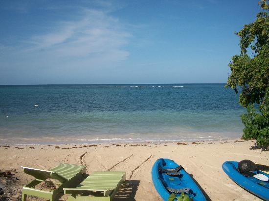 Little Bay Cabins: Beach, reef