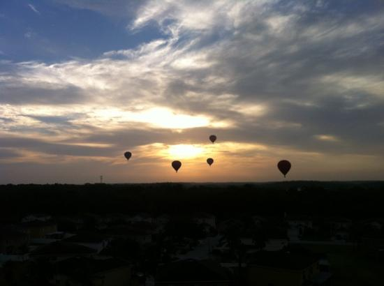 Balloons and Beyond: Tampa Flight
