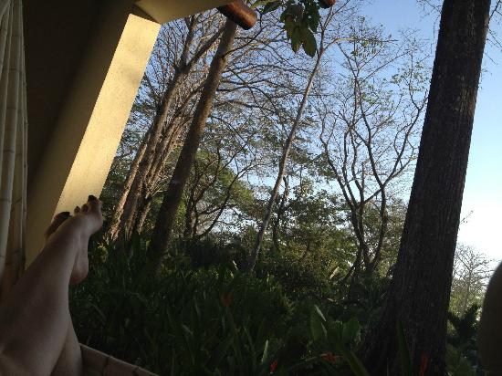 Villas Hermosas: Napping in the hammock from our porch