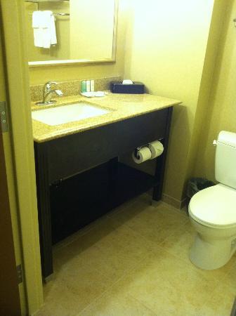 Comfort Inn & Suites Fort Campbell: granite counter top, upscale vanity