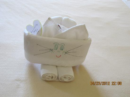 Iberostar Grand Hotel Trinidad: different animals made with towels every night