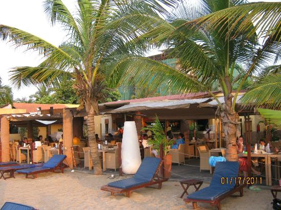 Coconuts: Coconut's Beach