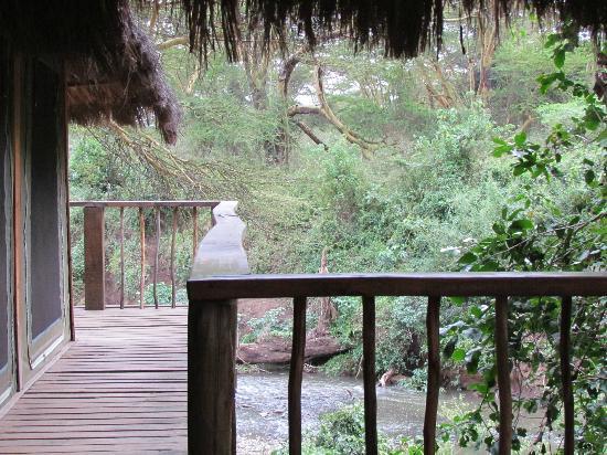 Kigio Wildlife Camp照片