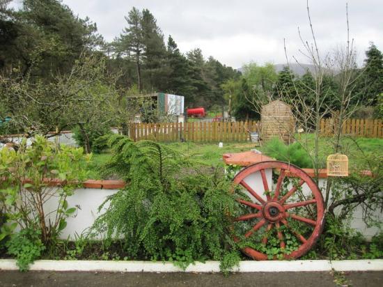 Forest Haven Farmhouse : garden