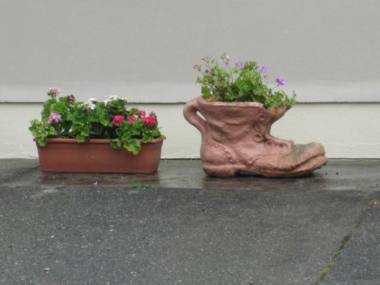 Forest Haven Farmhouse : pots of flowers