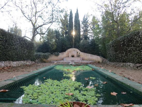 La Gracette : Garden - koi pond