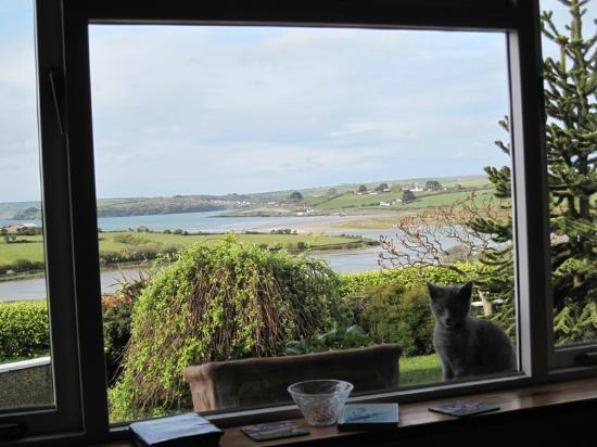 Seafield Farmhouse B&B: view from breakfast table